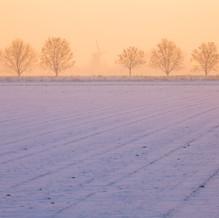 Mill, Schoondijke, Zeeuws-Vlaanderen, Netherlands