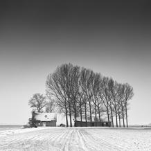 Farm in Snow, Zeeuws-Vlaanderen, Netherlands, 2021