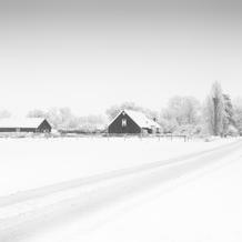 Horse Farm in Snow, Groede, Zeeuws-Vlaanderen, Netherlands, 2019