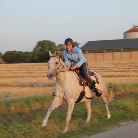 Polderrit, paardrijden, Zeeuws-Vlaandere
