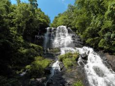 Waterfalls 2 - Amicalola Falls, GA.JPG