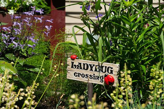 Garden Tour #5-3LR.jpg