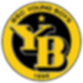 BSC_Young_Boys_Logo.png