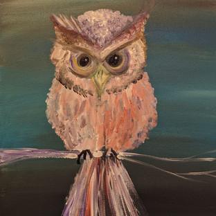 owl desktop.jpg