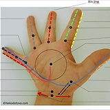 Pediatric Tuina Techniques.png