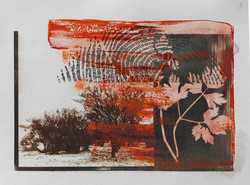 Gloria Esterio / pintura + vd