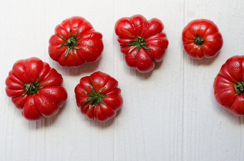 PLANTE__pomodori_vegetarianmood_catania.