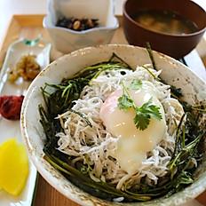 しらす丼(パクチーと湯浅醤油と共に)