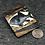 Thumbnail: Odd fish brooch