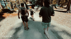 Guided Hikes with groups of friends