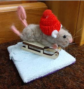 Ski mouse.jpeg