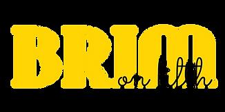 BRIM logo color-01.png