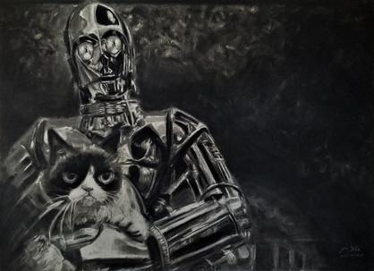 Grumpy Cat and C-3PO