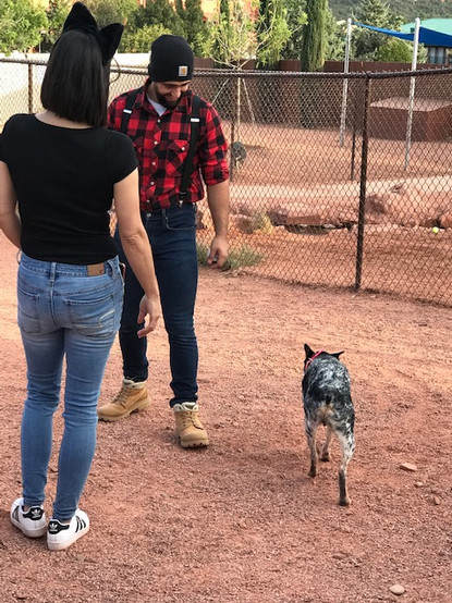 Lumberjack Dom and his dog Rocky talking with Michelle