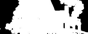 B&M Logo White House.png