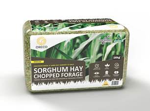 Sorghum%20Forage%20Large%20Bale_edited.j