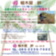 OB-絆.jpg