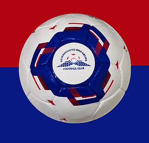 Gerringong Ball.JPG