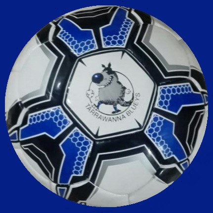 Training Ball with Club Logo
