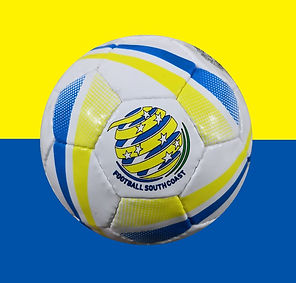 FSC Mini Balls - FSC Logo.JPG