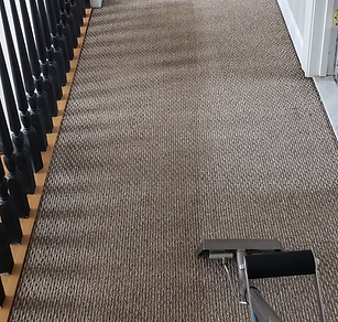 Easton carpet and upholstery cleaning