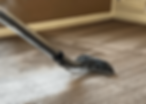 Carpet Cleaning Mansfield,Ma min