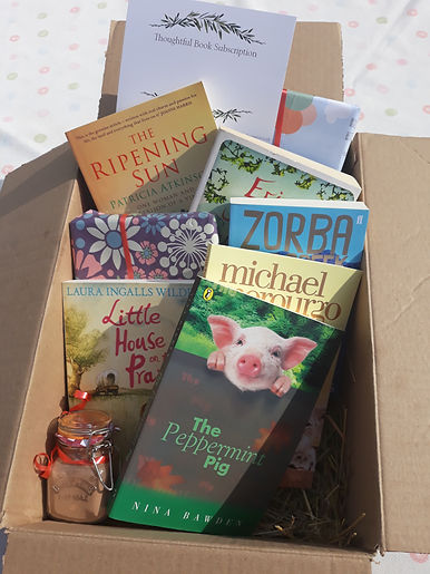 Second hand book box for children,peppermint pig, Erica James hot chocolate, personalised book box, gift