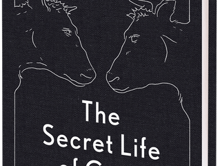 'The Secret Life of Cows'