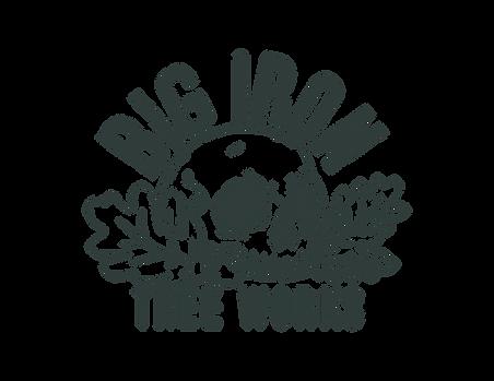 Big_Iron___solid-dark--1 color.png