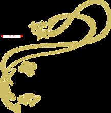 gold-design-md_edited.png