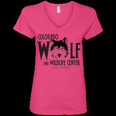 Ladies' V-Neck T-Shirt