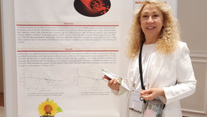 תוצאות מחקר המציג תוצאות בדיקות וסקולריות של משתתפים במחקר השמנה מטבולית