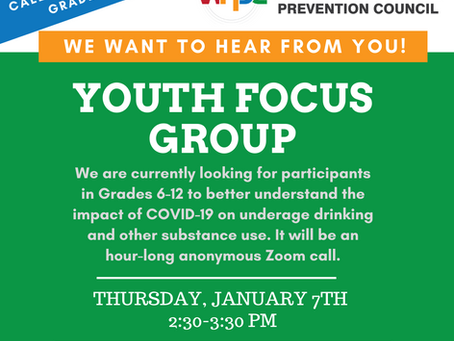 Specific Focus Group for West Haven Youth