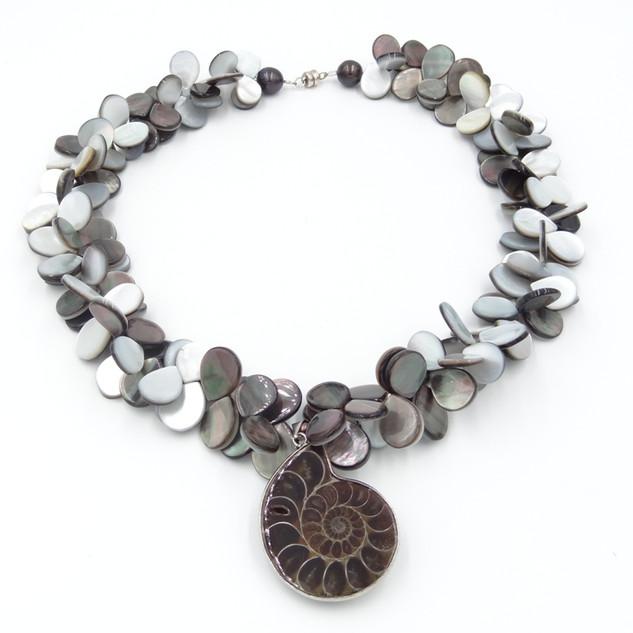 ammonite sea.JPG