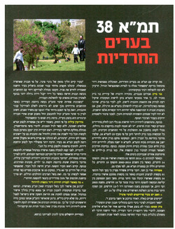 מגזין נדלן - תמא 38