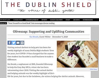 Dublin Shield Article.png