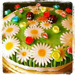 Spring Meadow Cake