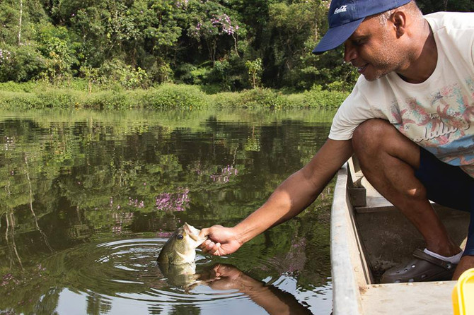 É possível ter uma boa pescaria no inverno? Conheça comportamentos e dicas de cada espécie.