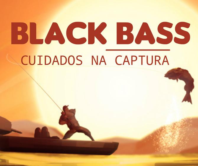 Cuidados ao se pescar o Black Bass.