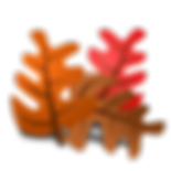 Thanksgiving-PNG-Picture.png