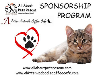 sponsorship program graphic logo.jpg