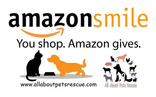 Amazon logo smile