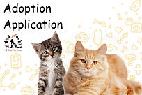 adoption application.jpg