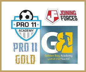 Pro11 Gold Merger.jpg