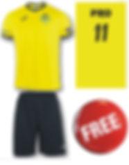 Free Kit.JPG