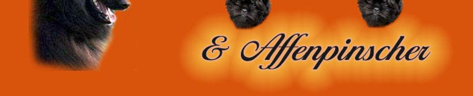 Banner_orange2.jpg