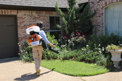 Front Yard Spraying Bed.JPG