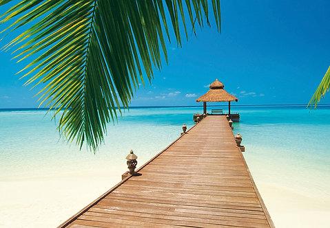 284 Paradise Beach