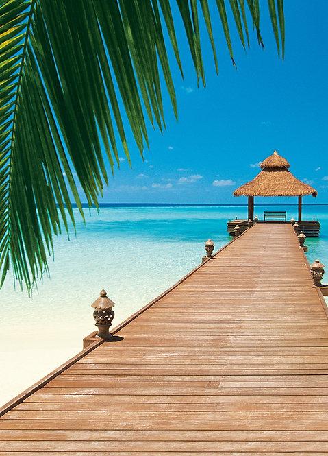 376 Paradise Beach