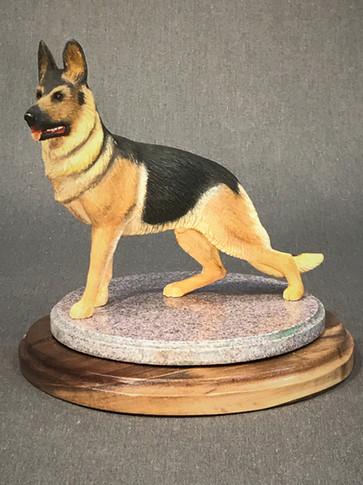 German Shepherd Dog by Larry Nix